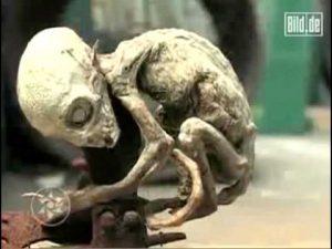 """Pui de """"extraterestru"""" în Mexic"""