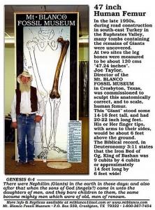 12. Femur uriaș găsit în mormintele din Valea Eufratului, Turcia