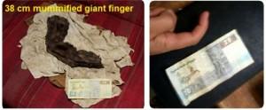 39. Deget uriaș mumifiat